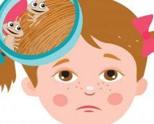 CHARLA SOBRE PEDICULOSIS EN INFANTIL