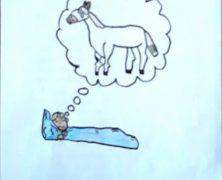 VII Concurso de sueños: Caballo blanco
