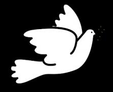 Programa COMUNICA y Librarium: Día de la Paz