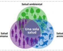 «Pandemias y naturaleza»