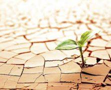 Esperanza y confianza